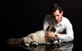 Picture cat, cat, male, guy