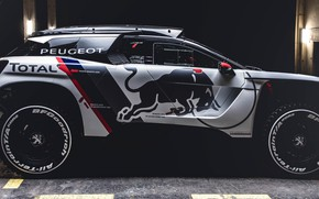 Picture Auto, Machine, Peugeot, Red Bull, Rally, Dakar, Dakar, SUV, Rally, Sport, Side view, DKR, 3008, …