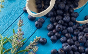 Picture flower, berries, Board, food, blueberries, blueberry