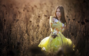 Picture summer, girl, nature, Yellow Dress
