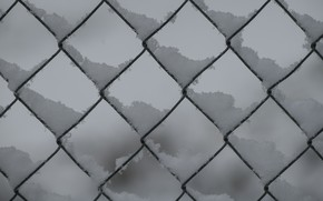 Picture winter, snow, mesh, the fence