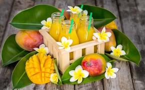 Wallpaper plumeria, juice, mango, bottle