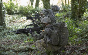 Picture forest, weapons, soldiers, equipment
