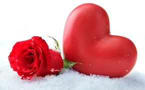 Picture flower, snow, close-up, heart, rose, white background, red, bokeh, Valentine's Day