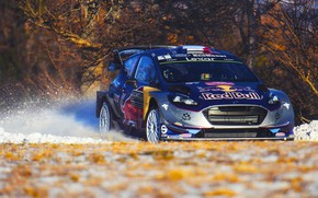 Picture Ford, Winter, Auto, Snow, Sport, Machine, Ford, Race, Car, WRC, Rally, Rally, Fiesta, Fiesta, Ford …