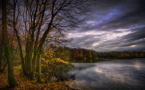 Picture autumn, leaves, trees, clouds, lake