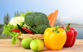 Picture table, background, pepper, basket, vegetables, carrots, cabbage, bokeh, salad