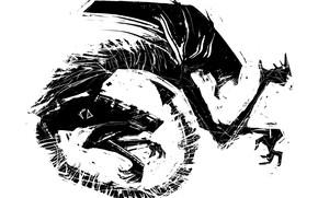 Picture white, black, alien, sketch, xenomorph