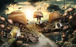 Picture road, pond, mushrooms, dog, index, bucket, cart, weathervane, a mushroom tale