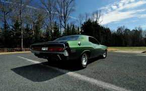 Picture green, Dodge Challenger, muscle classic