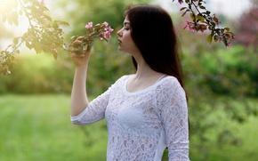 Picture profile, sponge, flowering