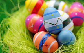 Picture eggs, Easter, socket, eggs