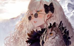 Picture Girl, long hair, anime, art, birds, glasses, artwork, owl, sweater, anime girl, hair ornament, pointy …