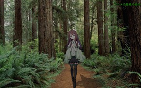Picture forest, girl, anime, madskillz