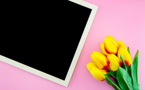 Picture flowers, tulips, Board