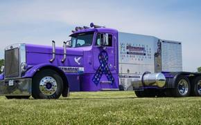 Picture Truck, Peterbilt, Unknown, Destination
