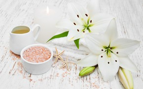 Picture flowers, Lily, starfish, sea salt