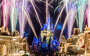 Picture the city, castle, the crowd, salute, Disneyland