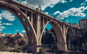 Picture trees, bridge, architecture