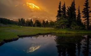 Picture forest, mountains, lake, reflection, glade, ate, Washington, Mount Rainier, The cascade mountains, Washington State, Cascade …