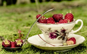 Picture grass, berries, raspberry, Cup, saucer, ladle