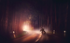 Wallpaper forest, motorcycle, road, fog