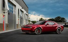 Picture car, Dodge Challenger, sky, asphalt, Dodge Challenger SRT, Dodge Challenger SRT Hellcat Widebody