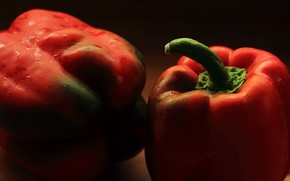 Picture macro, background, paprika