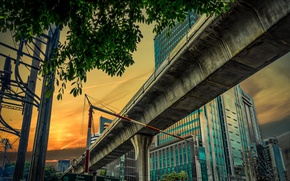 Picture house, tree, overpass, support, Thailand, Bangkok
