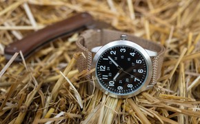 Picture watch, hay, dial