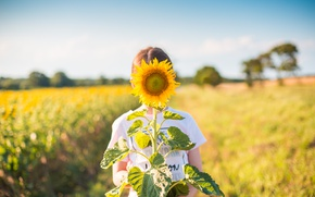 Picture summer, child, sunflower, petals, girl