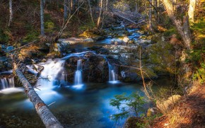 Picture Waterfall, Lake, Stream