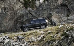 Picture road, movement, black, Mercedes-Benz, 2018, G-Class