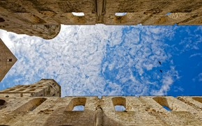 Picture the sky, clouds, birds, France, architecture, Jumièges Abbey