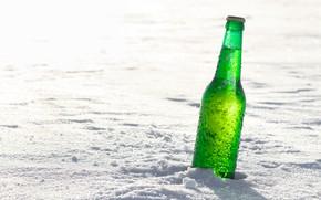Picture winter, white, the sun, drops, snow, bottle, wet, green, bokeh