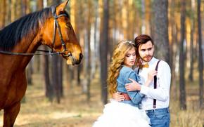 Picture girl, the sun, trees, Park, horse, pair, guy, lovers, bokeh