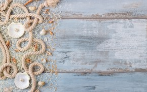Picture sand, shell, wood, sand, marine, still life, pearl, seashells, perl