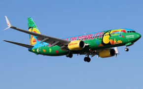 Picture the sky, the sun, the plane, flies, passenger, Boeing 737-8K5