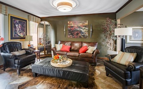 Picture design, sofa, chair, leather, pictures, living room