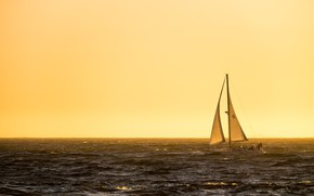 Picture sea, morning, yacht, sails