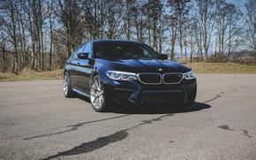 Picture BMW, Predator, 2018, Sight, F90