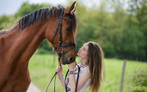 Picture girl, horse, friends