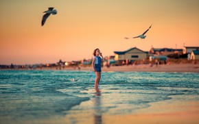 Picture shore, seagulls, surf, girl, Annie Of Antikov