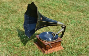 Picture grass, record, gramophone