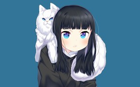 Picture cat, cat, anime, art, girl, blue background