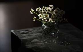 Picture on the table, in the dark, a bouquet of daisies, in a vase
