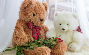 Picture toy, roses, bear, bear, romantic, teddy, roses