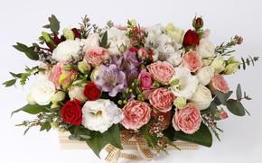 Picture rose, composition, eustoma, Alstroemeria