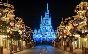 Picture night, the city, castle, Disneyland
