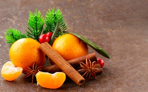 Wallpaper bokeh, slices, star anise, pine branches, star anise, close-up, oranges, cinnamon